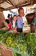 Laos, Luang Prabang Province. The market at Phou Khoun. Hill tribe people.