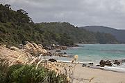 Lee Bay, Stewart Island, New Zealand