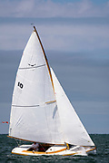Owl sailing in the Nantucket Opera House Cup.