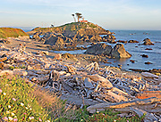 Sunset on Lighthouse and Beach, Crescent City California