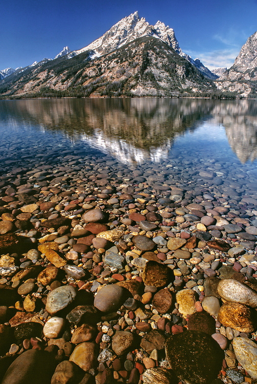 Multi-colored shore pebbles are magnified by the waters of Jenny Lake, in Wyoming's Grand Teton NP.