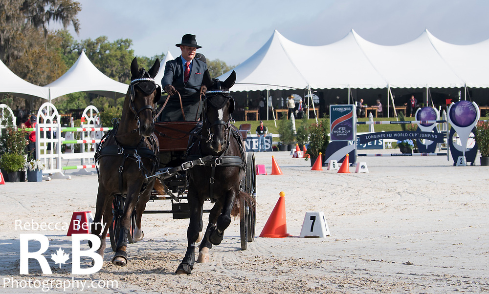 Scott Adcox (USA) during the Intermediate Horse Pair cones during Live Oak International in Ocala, Florida - March 18, 2018 - Rebecca Berry