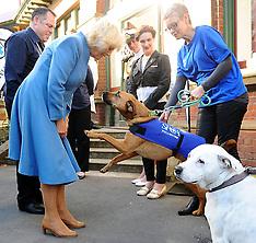 Wellington-Royals, Camilla, Duchess of Cornwall visits the SPCA