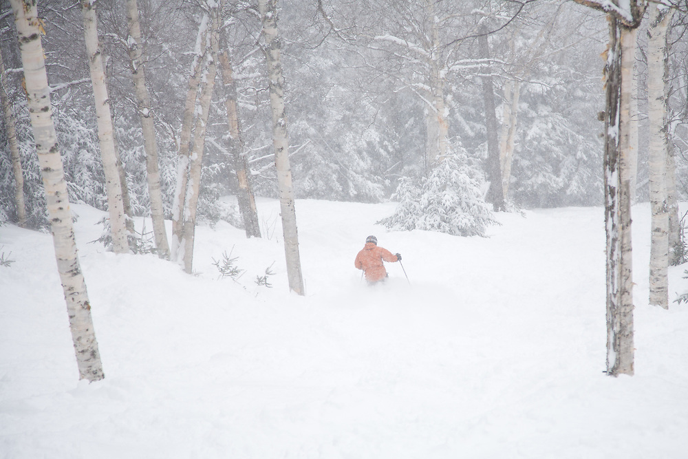 Skier skiing some fresh powder duringa a snow storm at Mad River Glen in Waitsfield, Vermont