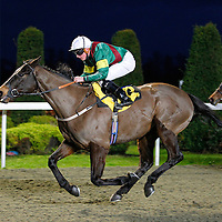 Prohibition and Ross Atkinson winning the 5.00 race