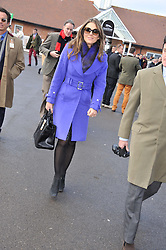 ELIZABETH HURLEY at the 2012 Hennessy Gold Cup at Newbury Racecourse, Berkshire on 1st December 2012