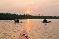 Kayaks on the Alligator River in eastern North Carolina, USA, part of the Alligator River National Wildlife Refuge.