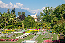 Villa Taranto Botanical Gardens (Giardini Botanici Villa Taranto) is in the town of Pallanza on the western shore of Lake Maggiore. The gardens were established 1931-1940 by Scotsman Neil Boyd McEacharn who bought an existing villa and its neighboring estates, cut down more than 2000 trees, and undertook substantial changes to the landscape, including the addition of major water features employing 8 km of pipes. Today the gardens contain nearly 20,000 plant varieties representing more than 3,000 species, set among 7 km of paths. Among its collections are azalea, cornus, greenhouses of Victoria amazonica, and 300 types of dahlias.mausoleum.  The villa in the background is part of the gardens but is not open to the public.