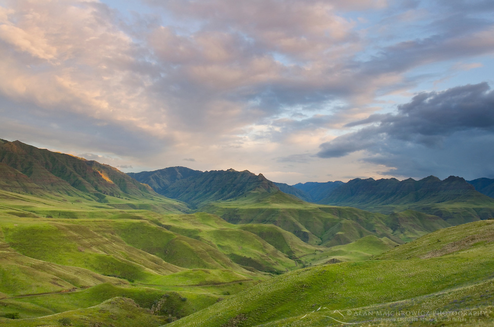 Evening light over the green hills above the Imnaha River Canyon, Hells Canyon Recreation Area Oregon
