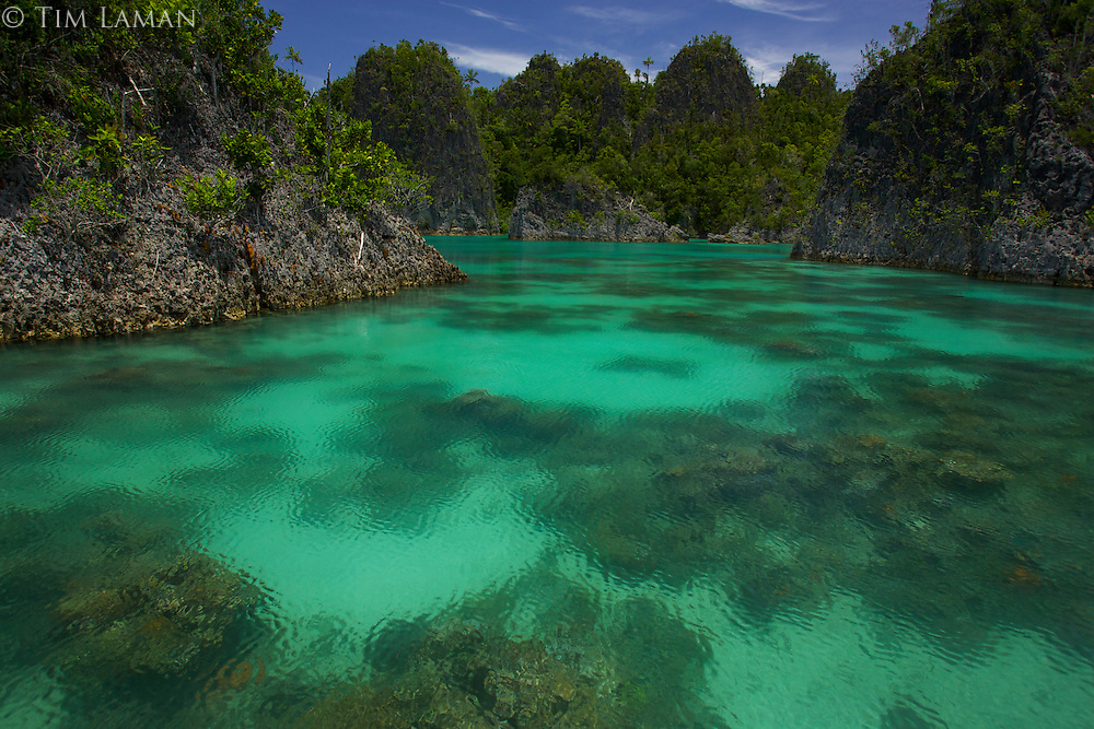 Limestone uplift islands in the Fam Group of islands in Raja Ampat Islands, Indonesia.