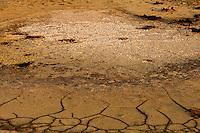 Il complesso produttivo delle saline è situato nel comune italiano di Margherita di Savoia (nome dato dagli abitanti in onore alla regina d'Italia che molto si adoperò nei confronti dei salinieri) nella provincia di Barletta-Andria-Trani in Puglia. Sono le più grandi d'Europa e le seconde nel mondo, in grado di produrre circa la metà del sale marino nazionale (500.000 di tonnellate annue).All'interno dei suoi bacini si sono insediate popolazioni di uccelli migratori e non, divenuti stanziali quali il fenicottero rosa, airone cenerino, garzetta, avocetta, cavaliere d'Italia, chiurlo, chiurlotello, fischione, volpoca..Pozza di sale al centro di un bacino vuoto