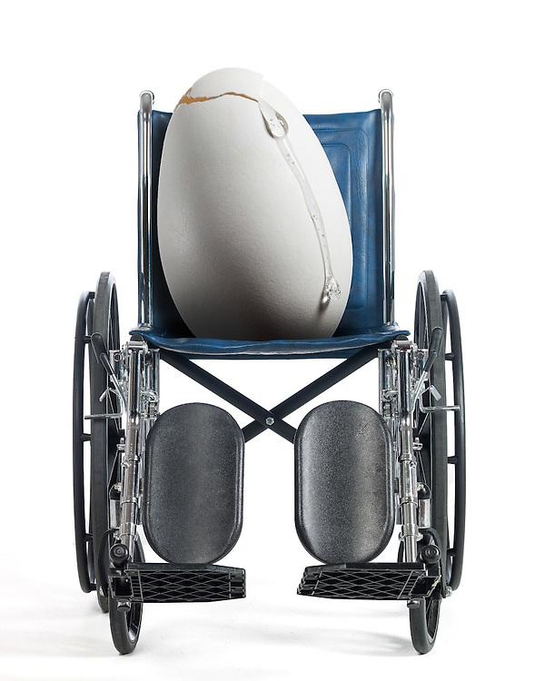 Joe Egg<br /> Wheelchair