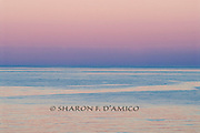 "Sky Meets Sea in Colors of PreDawn Light. Series: ""Horizons"""