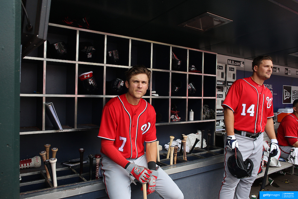 NEW YORK, NEW YORK - July 10: Trea Turner #7 of the Washington Nationals and Chris Heisey #14 of the Washington Nationals in the dugout preparing to bat during the Washington Nationals Vs New York Mets regular season MLB game at Citi Field on July 10, 2016 in New York City. (Photo by Tim Clayton/Corbis via Getty Images)