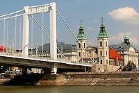 Elizabeth Bridge ( Erzsébet Híd), Budapest, Hungary