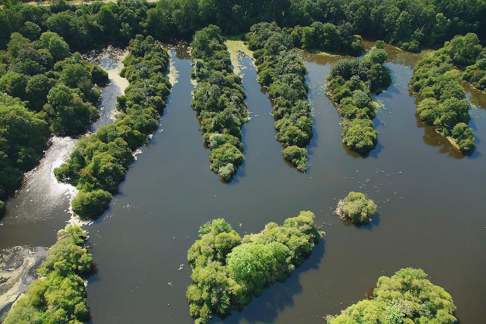 Bruz - Héronnière aux étangs de la Sablière