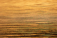 Golden ripples reflecting the sunset on the sea, Fiji