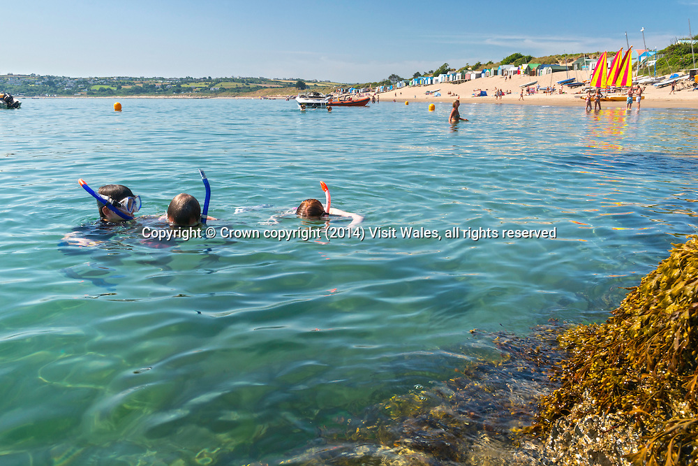 Snorkelling off beach<br /> Abersoch<br /> Llŷn Peninsula<br /> Gwynedd<br /> North<br /> Watersports<br /> Activities and Sports