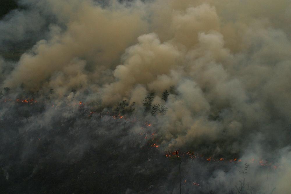 Forest fire near Puerto Aysen, Chile, Feb. 8, 2004. Daniel Beltra/Greenpeace.