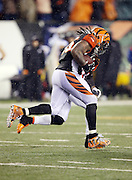 Cincinnati Bengals outside linebacker Vontaze Burfict (55) runs up field in celebration after intercepting a fourth quarter pass at the Pittsburgh Steelers 26 yard line with less than two minutes left in the game during the NFL AFC Wild Card playoff football game against the Pittsburgh Steelers on Saturday, Jan. 9, 2016 in Cincinnati. The Steelers won the game 18-16. (©Paul Anthony Spinelli)