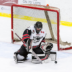 GEORGETOWN, ON - JANUARY 23: Carson Poulin #1 of the Georgetown Raiders makes the save during the second period on January 23, 2019 at Gordon Alcott Memorial Arena in Georgetown, Ontario, Canada.<br /> (Photo by Ryan McCullough / OJHL Images)