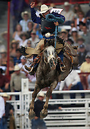 Dusty Hausauer scores a 74 while riding Apple Cider, Saddle Bronc Riding, 25 Jul 2007, Cheyenne Frontier Days