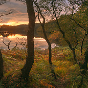 Dumfries and Galloway commission for Visit Scotland Loch Trool