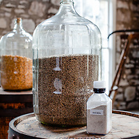 Grains used in the making of bourbon, at  Woodford Reserve Distillery