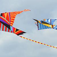 Santa Monica Kite Festival