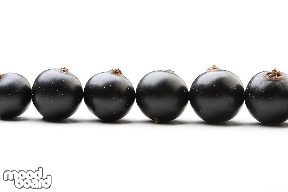 Black currants - close up