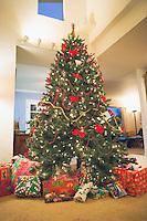 Christmas tree in home surrounded by presents.