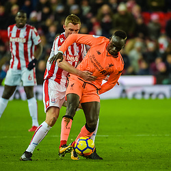 Liverpool midfielder Sadio Mane (19) and Stoke City midfielder Darren Fletcher (24) during the Premier League match between Stoke City and Liverpool<br /> (c) John Baguley | SportPix.org.uk
