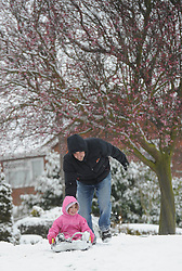 Rob Patten pushes daughter Lucy (5) on a sledge beneath a blossom covered tree in Cambridge, as unseasonal snowfall blankets the country, UK, March 24 2013.  Photo by Matthew Power / i-Images...