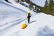 Backcountry skier and sled on the Glacier Point road, Yosemite National Park, California