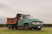 1953 Ford Truck<br />