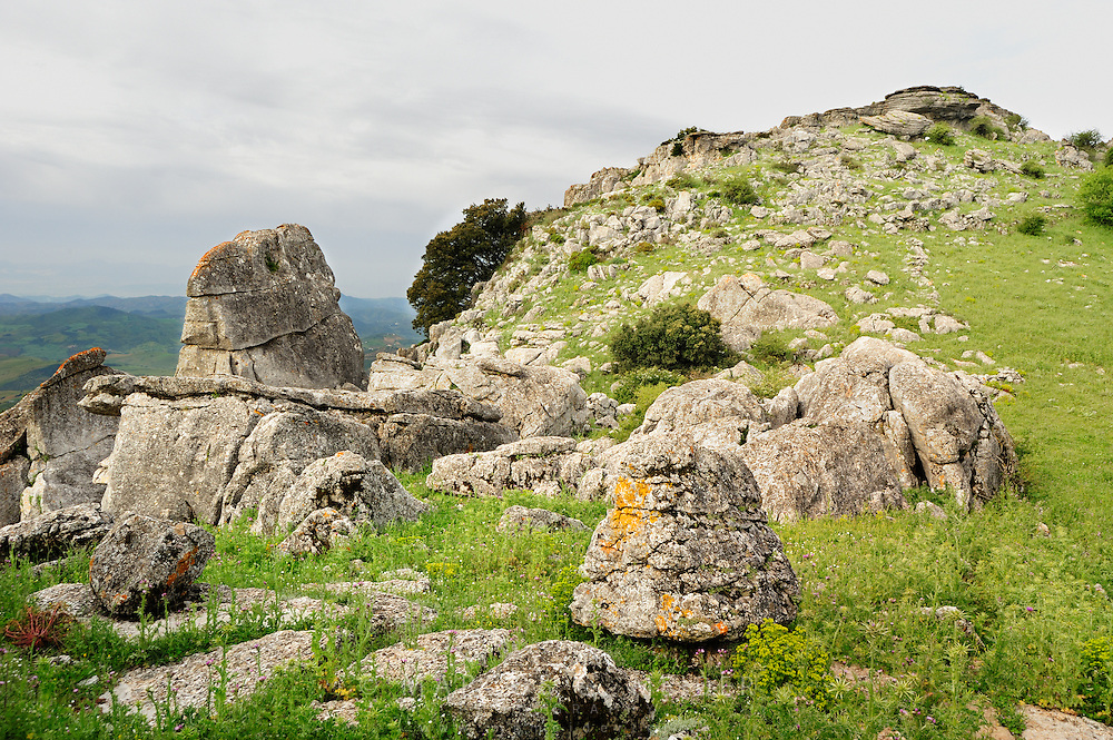 EN. Rocks and spring vegetation over plateau in the Torcal de Antequera Natural Park, Malaga province, Andalucia, Spain.<br /> ES. Rocas y vegetaci&oacute;n en primavera sobre meseta en el Parque Natural del Torcal de Antequera, M&aacute;laga, Andaluc&iacute;a, Espa&ntilde;a.