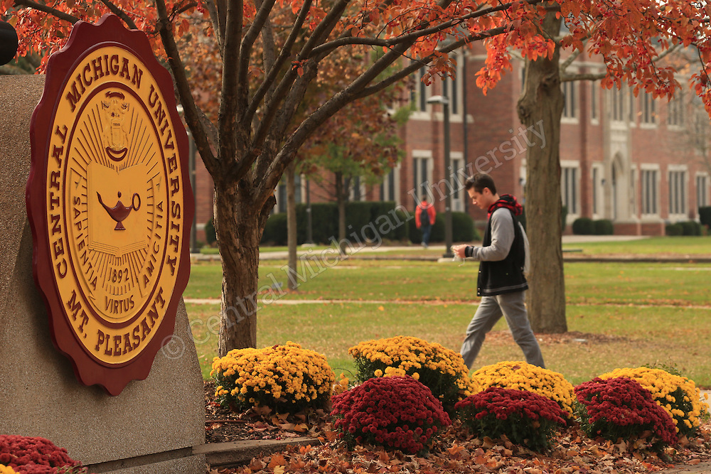 A student walks by the CMU Seal in Warriner Mall surrounded by an end of the fall color display on the campus of Central Michigan University on Tuesday November 5, 2013. Central Michigan University photo by Steve Jessmore