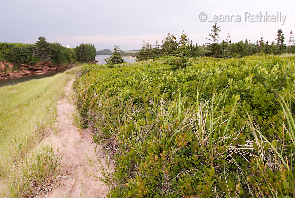 Basin Head beach, Prince Edward Island, Canada