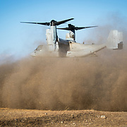 GUNMA, JAPAN - MARCH 10 : MV-22 Ospreys is seen flying during a joint training drill of US Marines and Japan's Ground Self Defense Force in JGSDF Camp Soumagahara , Gunma prefecture, Japan on March 10, 2017. (Photo: Richard Atrero de Guzman/ANADOLU Agency)