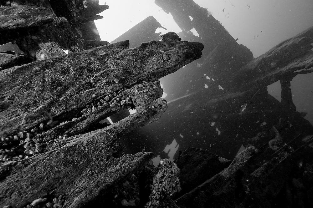 Planches de bois et clous de métal forment la coque du Robert Gaskin.  |  Wood and metail nails on Robert Gaskin hull structure.