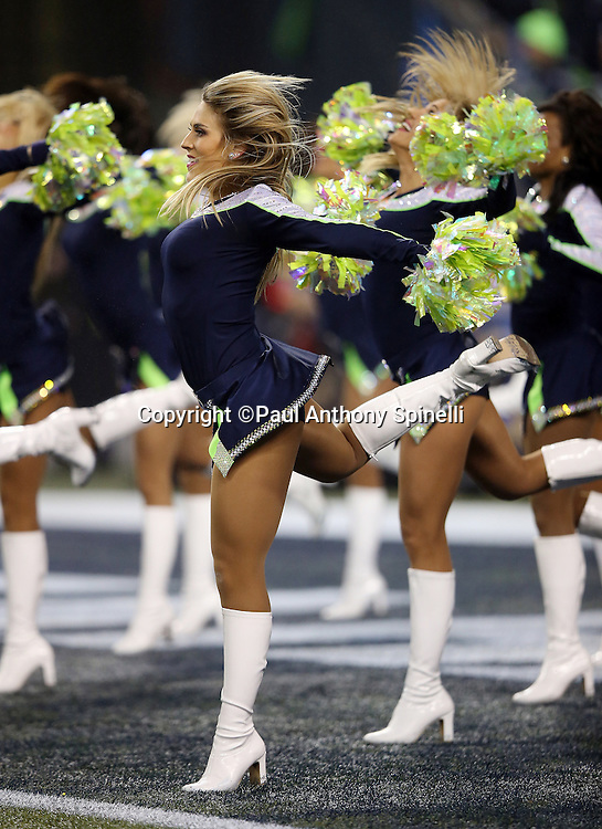 The Seattle Seahawks Sea Gals cheerleaders wave pom poms and do a high kick as they do a dance routine during the NFL week 19 NFC Divisional Playoff football game against the Carolina Panthers on Saturday, Jan. 10, 2015 in Seattle. The Seahawks won the game 31-17. ©Paul Anthony Spinelli