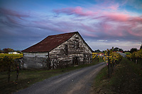 Dry Creek Valley Barn at Sunset During Fall Season, Healdsburg, California<br />