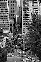 Montgomery Street from Telegraph Hill (monochrome)