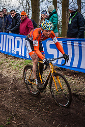 Thijs AL (30,NED), 5th lap at Men UCI CX World Championships - Hoogerheide, The Netherlands - 2nd February 2014 - Photo by Pim Nijland / Peloton Photos