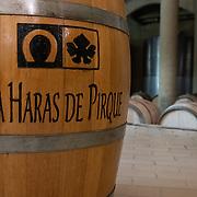 Viña Haras de Pirque. Winery. Santiago, Chile.