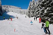 Wurmberg, Skihang, Skifahrer, Wald, Schnee, Winter, Braunlage, Harz, Niedersachsen, Deutschland | Wurmberg skiing, forest, snow, winter, Braunlage, Harz, Lower Saxony, Germany