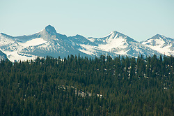 Snowcapped mountains, pine forests, high country, Yosemite National Park, California, USA.  Photo copyright Lee Foster.  Photo # california120836