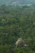 Ancient Ruined Mayan Pyramid Rising Above Jungle Canopy, Coba Mexico