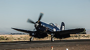 Chance-Vought F4U-7 Corsair of the Erickson Aircraft Collection landing.