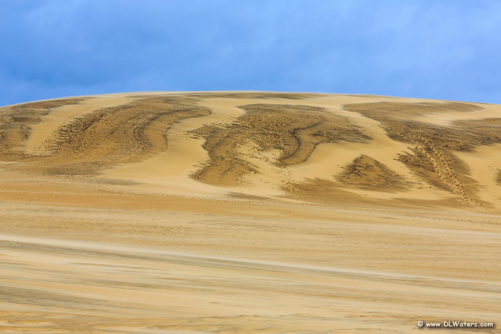 Large sand dune  at Jockey's Ridge State Park in strong  winds.